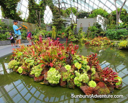 cloudforest-gardenbythebaysingapore