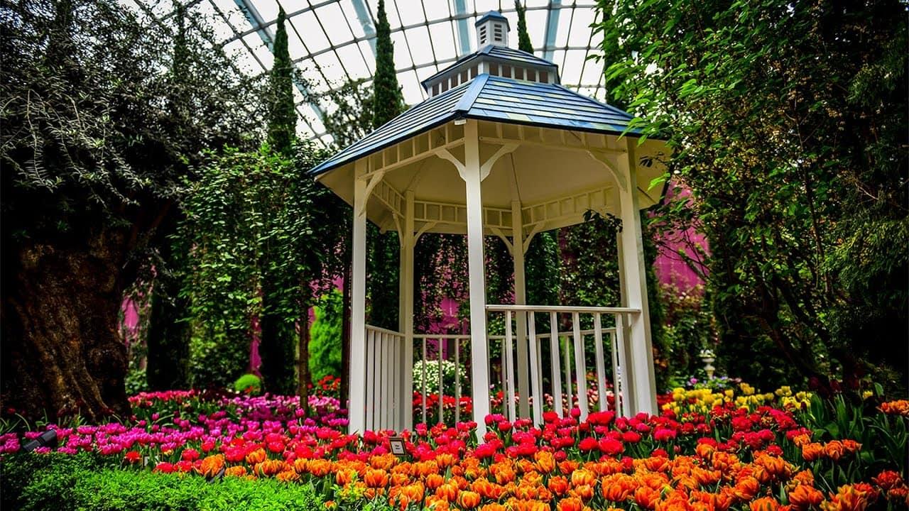 garden dome. Flower Dome Gardens By The Bay 8 Garden