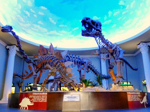 Jatim Park Ii Dan Museum Satwa Malang Sunburstadventure Com